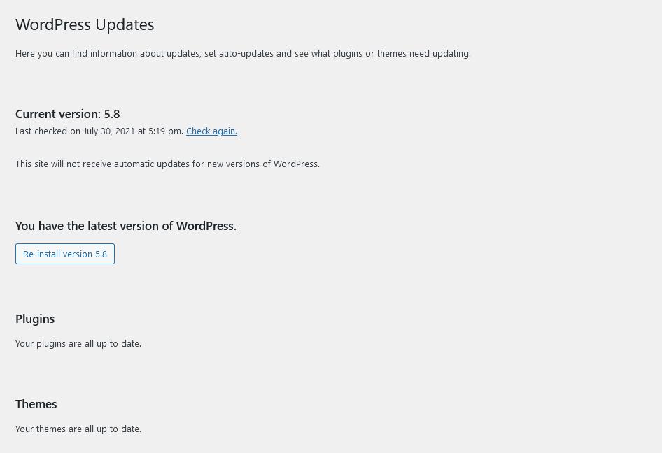 Screenshot 2021 07 30 at 10 19 55 WordPress Updates ‹ Hopewell Digital — WordPress
